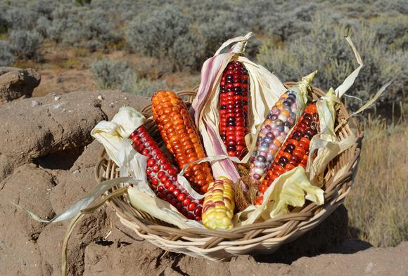 Corn jewels 1