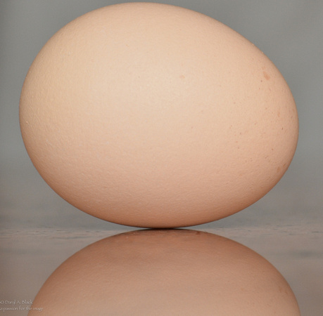 Egg reflection 1