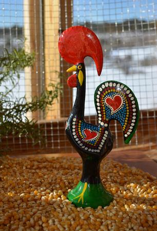 rooster setup 2