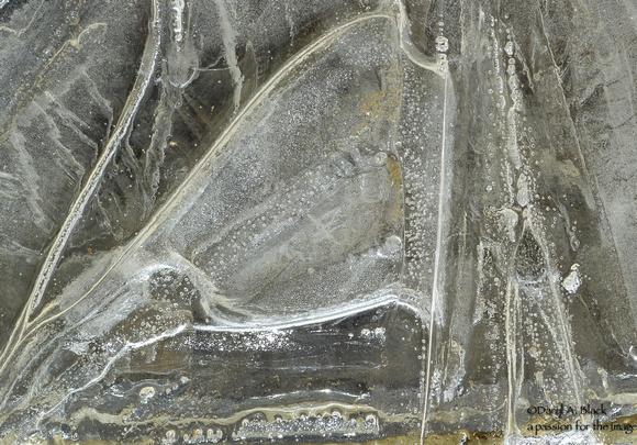ice designs 3
