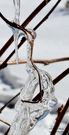 ice close up 1
