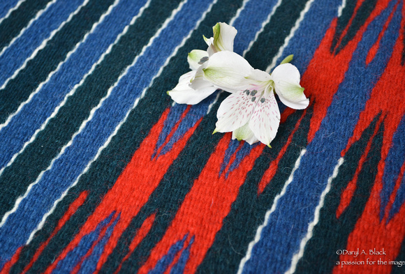 Peruvian lily and rug 315 # 3