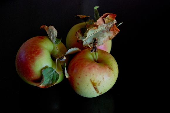 Victoria's apples